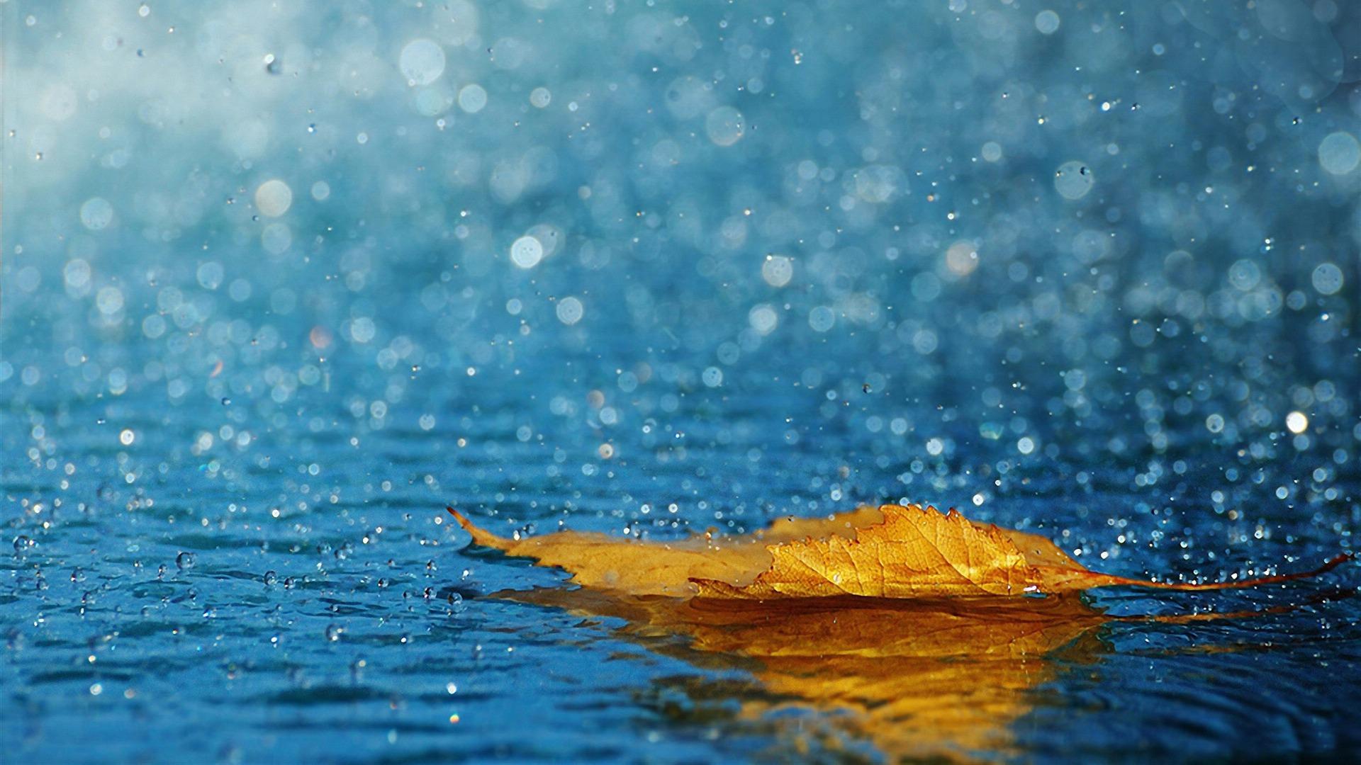 Хэнтийн нутаг, Төв аймгийн зүүн, Дорнодын хойд хэсгээр усархаг бороо орно